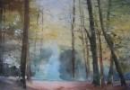 Sous-bois ardennais - aquarelle 76 x 56 cm