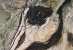 Oeil de zèbre endormi - huile sur toile 30 x 15 cm